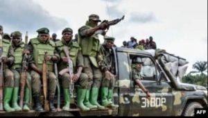 Dossier trafic présumé d'armes à Beni : une Ong de Droits de l'Homme sollicite le départ de certains officiers Fardc